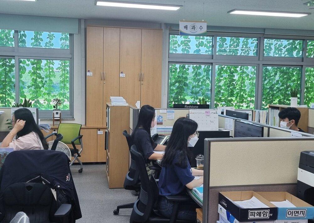 사무실 내부에서 바라본 녹색커튼